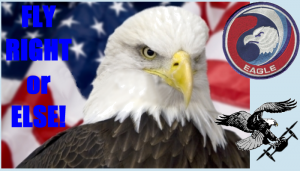 20160202-eagle